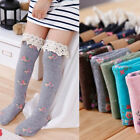 NEW Sweet Kids Child Girl's Cotton Princess Floral Flowers Lace Long Tube Socks