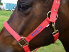 Personalised Embroidered Headcollar FROM £8.90. Shetland Size