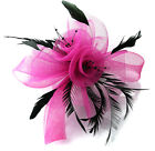 Butterfly Black Feather Wedding Ascot Fascinator on Comb Hat Hair Accessories