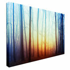 Mysterious Forest Clearing Sunset Canvas Art Cheap Wall Print Any Size