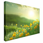Meadow at Morning Canvas Art Cheap Wall Print Any Size