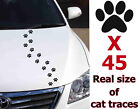 Traces Of Cat Paw Simons Decals Stickers  Graphics Animals Vinyl Window Car A