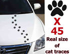 Traces Of Cat Paw Simons Decal Sticker Graphics Animals Vinyl Window Car A