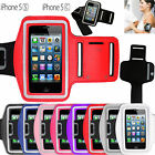 NEW SPORTS RUNNING JOGGING GYM ARM BAND CASES COVER POUCH FOR APPLE iPHONE 5C