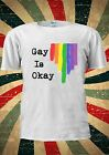 Gay Is OK Rainbow Colourful LGBT Tumblr Fashion T Shirt Men Women Unisex 1035