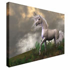 White Unicorn Stallion Canvas Art Cheap Wall Print Home Interior