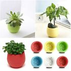 Colourful Cute Round Plastic Plant Flower Pot Home Office Decoration Planter New