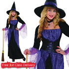 Ladies Witch Fancy Dress Outfit Adult Halloween Costume  Witch Dress & Hat