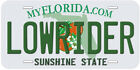 Lowrider Any State Novelty Tag Car License Plate