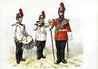 Queen's Own Royal West Kent Regiment Uniforms No.8 - 1856