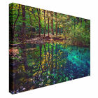 Hidden Lagoon Canvas wall Art prints high quality great value