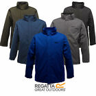 Regatta Thornhill Mens Waterproof Windproof Warm Padded Insulated Winter Jacket
