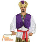 Adult Desert Prince Shirt Arabian Bollywood Aladdin Mens Fancy Dress Outfit New