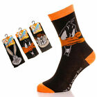 8 Mens LOONEY TUNES Cartoon Novelty 100% OFFICIAL Character Socks UK 6-11