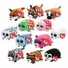 """TY Beanie Babies Teeny Tys Lot of 12 Complete Set stackable 3"""" Plush NEW"""