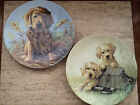 "Knowles ""Caught In The Act"" And ""Gone Fishin"" Collector Plates Golden Retrievers"