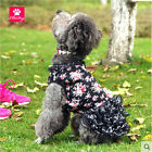 Dress for Small Pet Dog Skirt Princess Cat Dress Black Floral for Small Pets