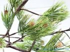 1 PCS Artificial Pine Tree Dried Branch Green Plant Home Garden Decoration F364