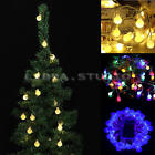 LED 2.5M Battery Operated 20-LED Bulbs String Lights Warm White Blue Multicolor