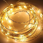 Pure/Warm White 10M/33FT 100 LED Copper Wire LED String Lights Lamp+ DC Adapter