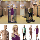 Kyпить Display Mannequin Dummy Full Body Stand Shop Window Display Tailor Female Male на еВаy.соm
