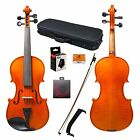 Paititi 4/4 Full Size Intermediate Level Plus Violin with Case, Bow and More
