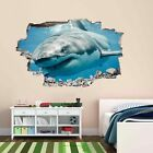 Great White Shark Wall Sticker Mural Decal Kids Bedroom Home Office Decor BS2