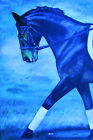 HORSE PRINT Giclee DRESSAGE Art CAPER by artist BETS 6 COLORS print size 14 X 19