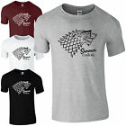 Summer is Coming T-Shirt - Funny Jon Snow Winter Game of Thrones Mens Gift Top