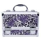 Luxury Large Space Metal Makeup Vanity Case Cosmetic Box with a Mirro Multilayer