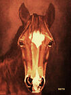 PONY PRINT Giclee MI AMORE artist BETS 4 COLORS print sze 14 x 19 WOW YOUR WALLS