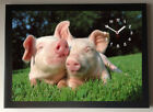 Little Pigs A4 Picture Clock