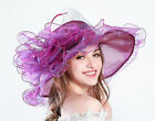 Kentucky Derby Party Hats Church Wide Brim Organza Feather Wedding Tea Party Hat