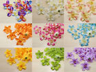 Внешний вид - 10pcs Cartland Artificial Thai Orchid Silk Flowers Heads lots wholesale crafts