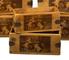 Jack Russel Box Great Terrier Lover Gift Vintage Storage Crate Single