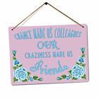 Our Craziness Made Us Friends V2 | Metal Wall Sign Plaque Art | Work Chance Cute