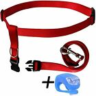 Red Running Dog Leash Hands Free with LED Light. Walking, Running, Jogging