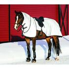 RAMBO REFLECTIVE NIGHT RIDER EXERCISE SHEET HI VISIBILTY RUG