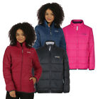 Regatta Zyber Womens Lightweight Water-Repellent Insulated Jacket