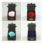 Preserved Fresh Flower Never Fad Glass Cover Gift Natural Ecuador Roses Love
