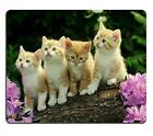 Kitten Flower Cute Funny Group Cat Animal Pet Mouse Pads Customized Made to Orde