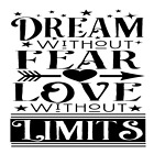 Dream Without Fear Love Without Limits Arrow Vinyl Decal Sticker Wall DIY Choice