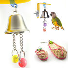 Parrot Bell Toys Birds Chewing Hanging Cage Bite Accessories Metal Beads Playing
