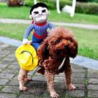 Christmas Cowboy Rider Dog Costume Dogs Clothes Knight Style Doll And Hat DD