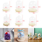 Precious Glass Display Dome Decorative Cloche Bell Jar Christmas with Base Cover