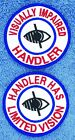 "Visually Impaired Handler Limited Vision Service Dog 3"" Assistance Danny & LuAnn"