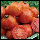 Red Zebra Tomato 10 200 Seeds Rare Heirloom Very productive Combined shipping