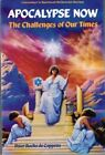 APOCALYPSE NOW: CHALLENGE OF OUR TIMES (LLEWELLYN'S SPIRITUAL By Peter Roche VG