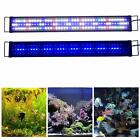 Kzkr Aquarium Hood Lighting Led Fish Tank Light 24-84 Inch Lamp For Freshwater S