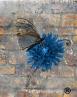Rustic Brown Blue Modern Floral Butterfly Home Decor Matted Artwork Picture